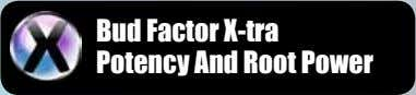 Bud Factor X-tra Potency And Root Power