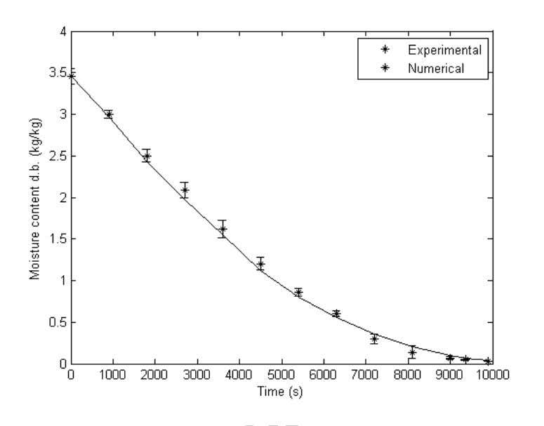 Figure 6 - Average moisture content of the ya con foam during drying at the