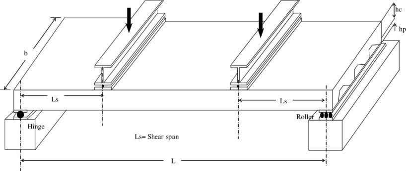 span loadings and three sets of longer shear span loadings. Fig. 5. Schematic view of the