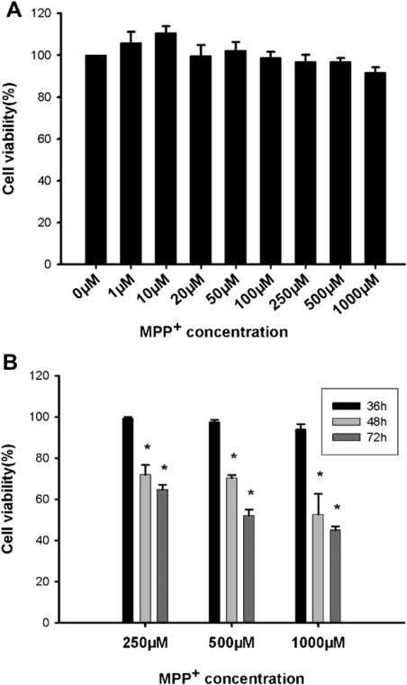 the cell viability of PC12 cells with MPP þ in higher Fig. 1. Effects of MPP