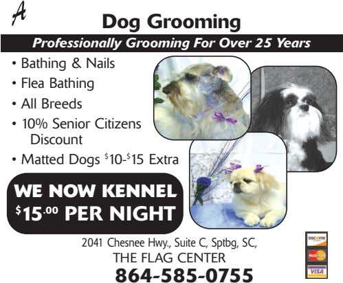 Dog Grooming Professionally Grooming For Over 25 Years • Bathing & Nails • Flea Bathing
