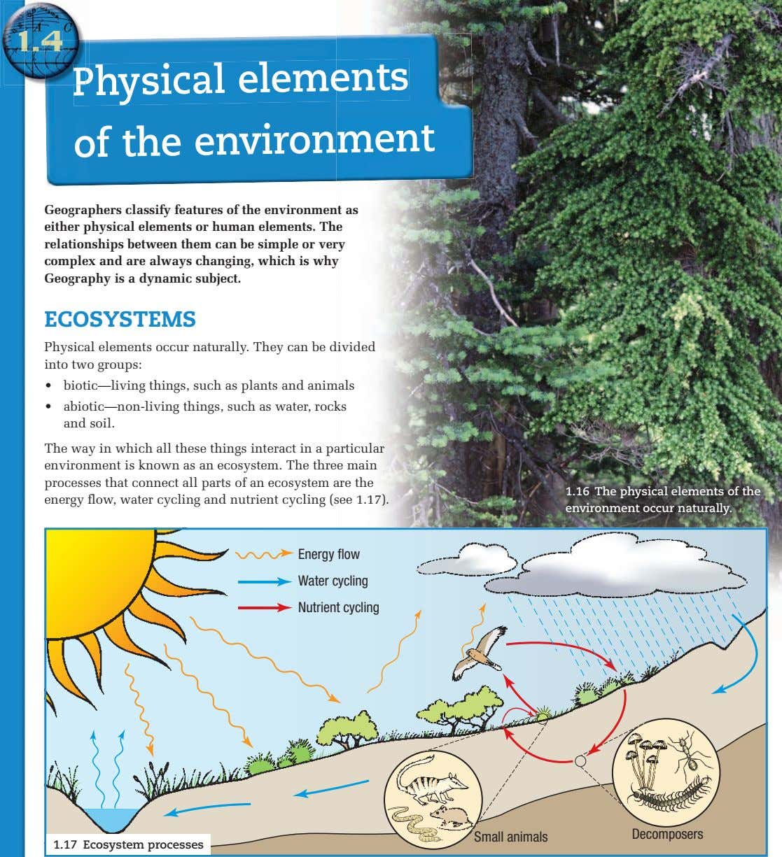 Physical elements of the environment Geographers classify features of the environment as either physical elements