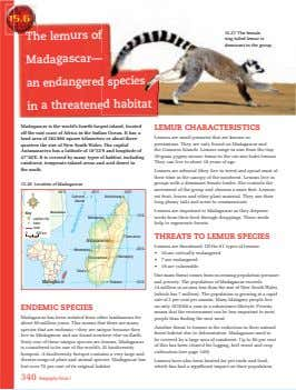 The lemurs of 15.27 The female ring tailed lemur is dominant in the group. Madagascar—