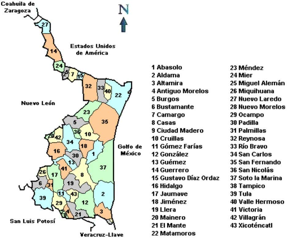 ESTADO Y MUNICIPIOS