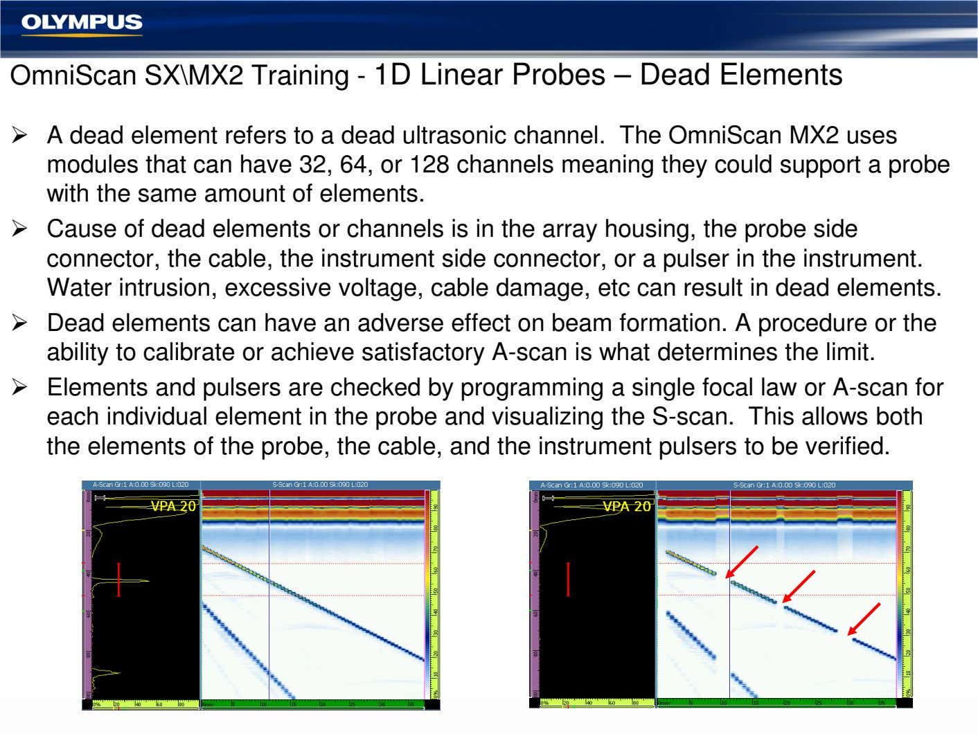 OmniScan SX\MX2 Training - 1D Linear Probes – Dead Elements A dead element refers to