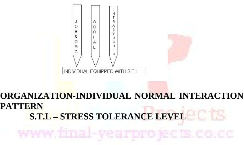 ORGANIZATION-INDIVIDUAL NORMAL INTERACTION PATTERN S.T.L – STRESS TOLERANCE LEVEL