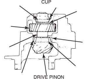 CUP DRIVE PINON
