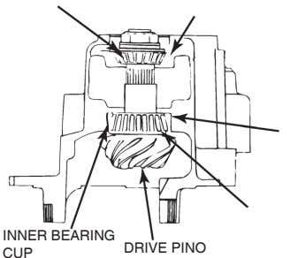 INNER BEARING DRIVE PINO CUP