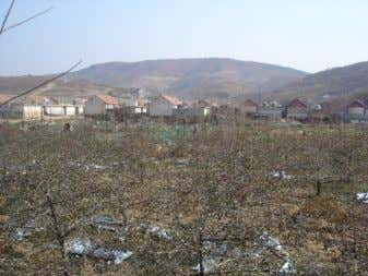 3. Orchard and village near to the Song Jiagou property. Source: Author's photo Figure 4. Large