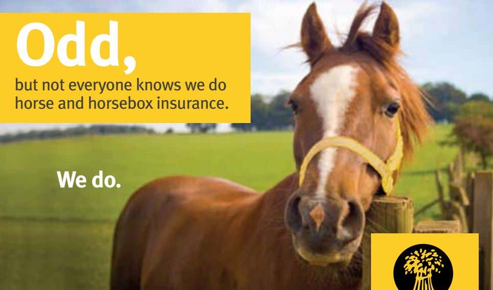 Odd, but not everyone knows we do horse and horsebox insurance. We do.