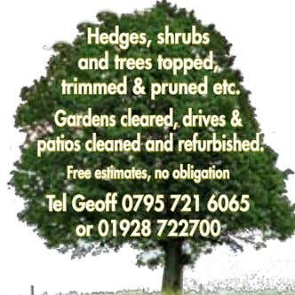 Hedges, shrubs and trees topped, trimmed & pruned etc. Gardens cleared, drives & patios cleaned