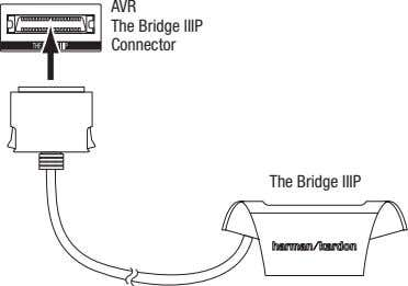 Avr the bridge IIIp connector the bridge IIIp