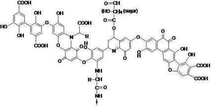 an effective surface-active agent (Beckett, 1990) for the Figure 1 Most probable structure of humic acid