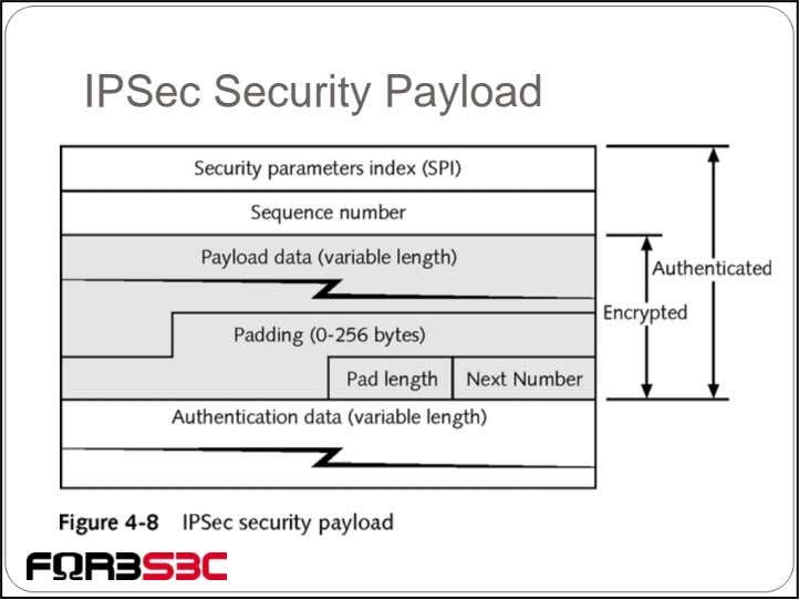 IPSec Security Payload