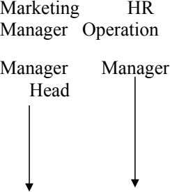 Head Manager Marketing Manager Manager HR Operation