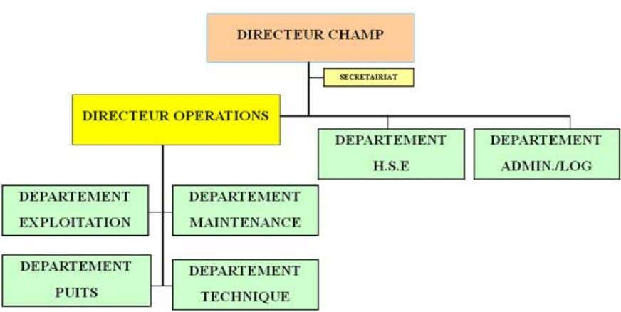 Présentation et composition du champ Ourhoud : Organigramme de la direction champ d'Ourhoud: