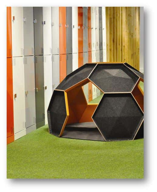 is available at: http://www.oticon.org.nz/grantRep.htm Figure 6 : 'Igloo' installed in school hallway Page 7 of 46
