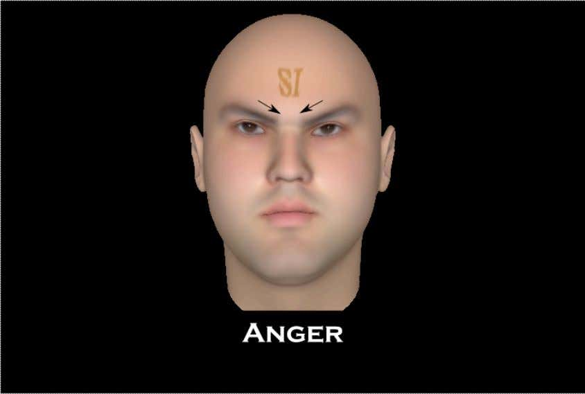 Anger Anger is an expression that comes in several combinations that involve the inner eyebrow muscles