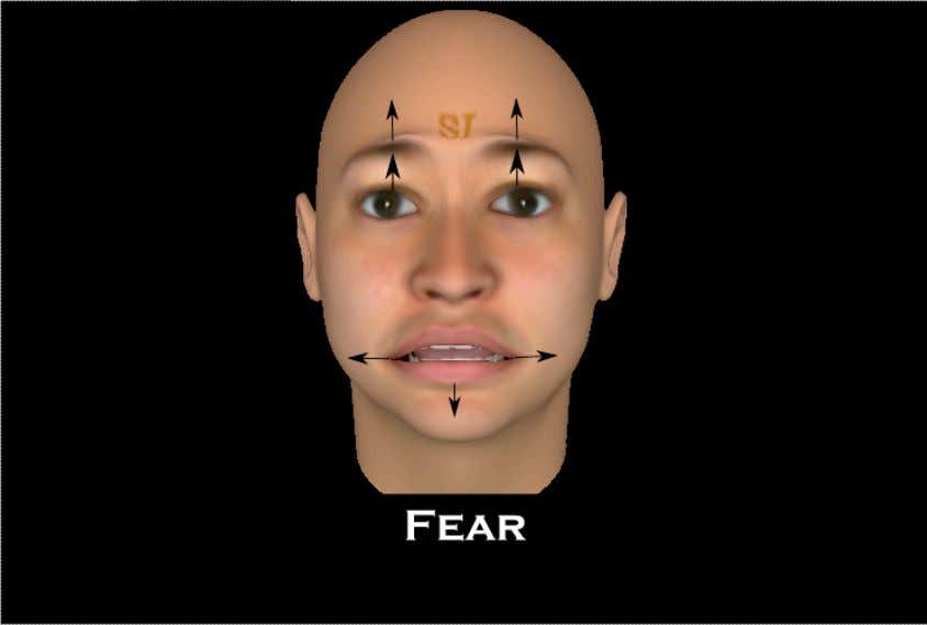 Fear The Fear emotion is closely related to the surprise emotion as stated earlier. The key