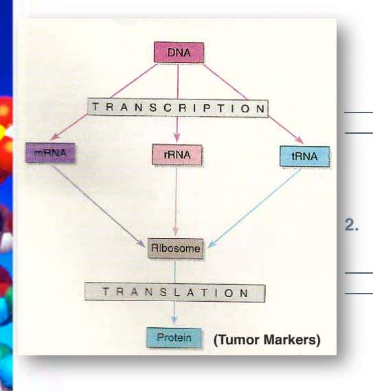 2. (Tumor Markers) !