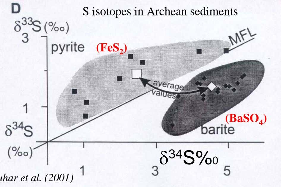 S isotopes in Archean sediments (FeS 2 ) (BaSO 4 ) δ 34 S%0