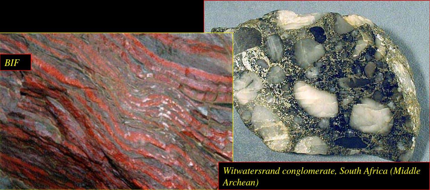 BIF Witwatersrand conglomerate, South Africa (Middle Archean)