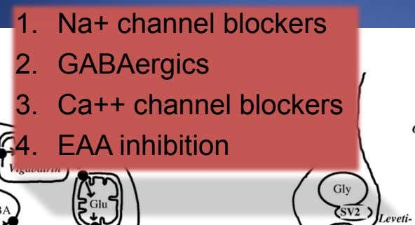 1. Na+ channel blockers 2. GABAergics 3. Ca++ channel blockers 4. EAA inhibition