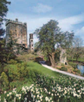 Kiss the stone at Blarney Castle SPEND YOUR LAST NIGHT IN A CASTLE! Why not