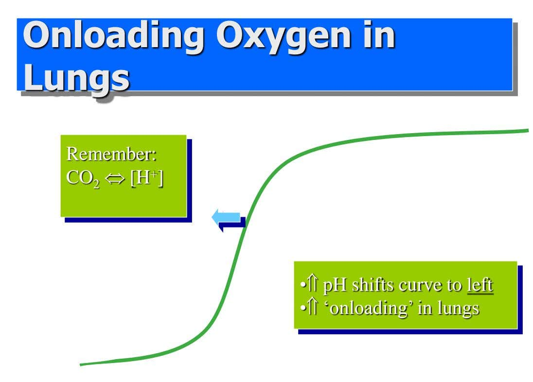 Onloading Oxygen in Lungs oxyhemeglobin pH 7.45 Remember: pH 7.4 CO 2  [H + ]