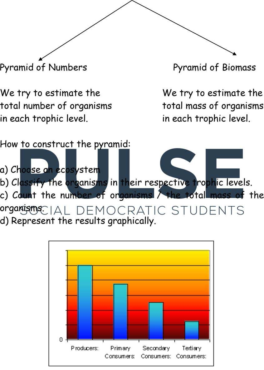 Pyramid of Numbers Pyramid of Biomass We try to estimate the total number of organisms in
