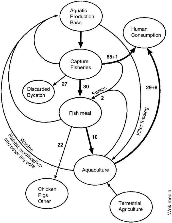 / Ocean & Coastal Management 49 (2006) 531–545 Fig. 4. Flow chart of capture and farmed