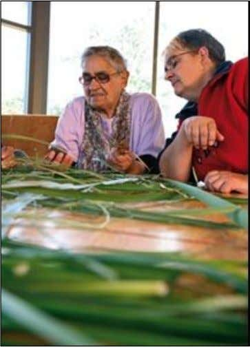 Aboriginal Tasmanian use of kelp hHp:// www.craYaustralia.org.au /library/ review.php id=