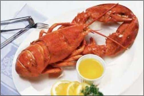 What is causing reduc<on in lobster size?