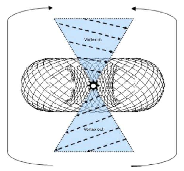 Side-view of torus emphasizing vortex-like motion. Family Number Groups & The Binary Triplet: There are