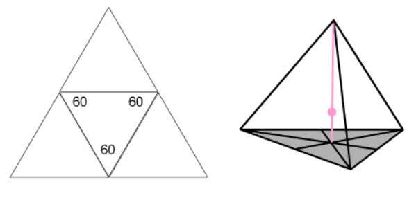 bottom). (Images adapted form ones in The Rodin Glossary) The center of mass in a tetrahedron