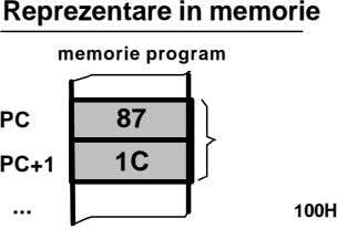 Reprezentare in memorie memorie program PC 87 PC+1 1C 100H