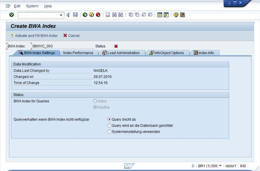 New with SAP NetWeaver BW 7.30 and BW Accelerator 7.20? The indexing parameters are now also