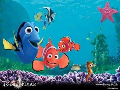 "Nemo  ""Dory""  No short-term memory  No ""what"" area?"