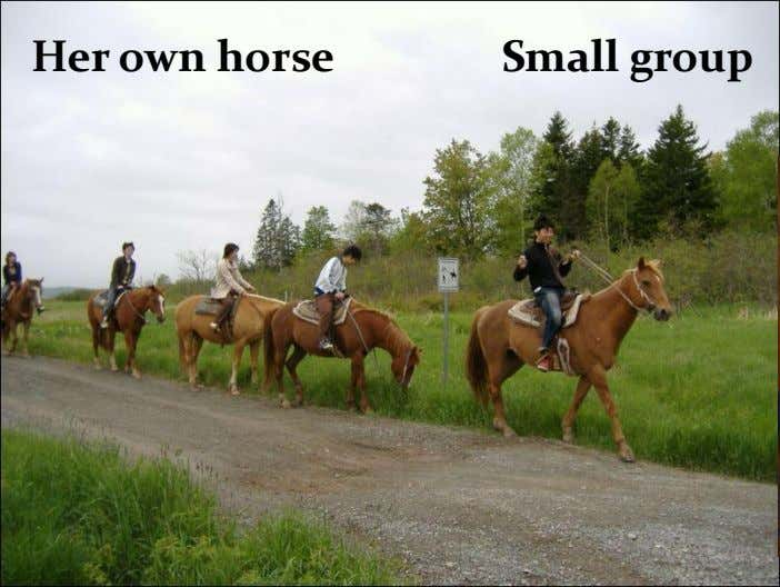 Her own horse Small group