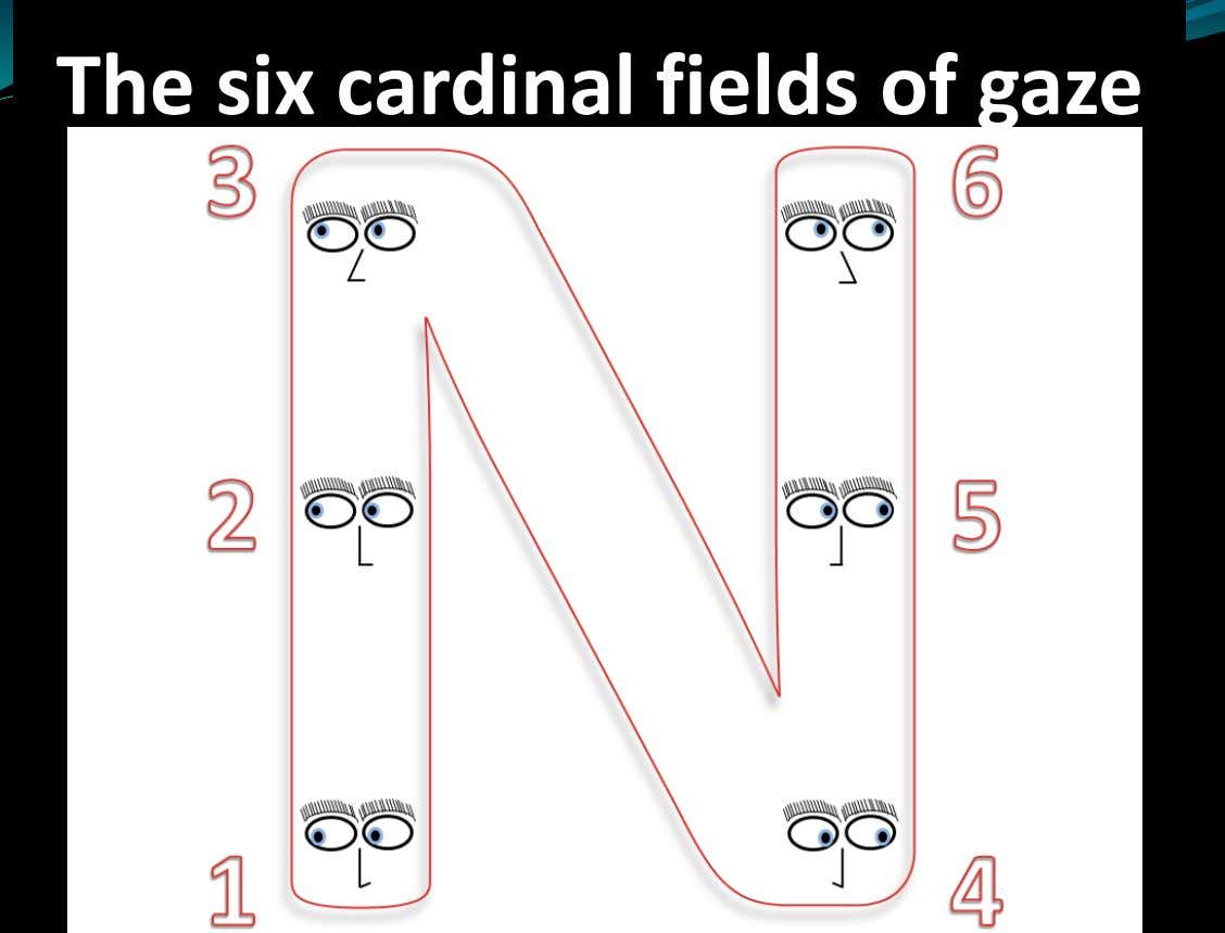 The six cardinal fields of gaze
