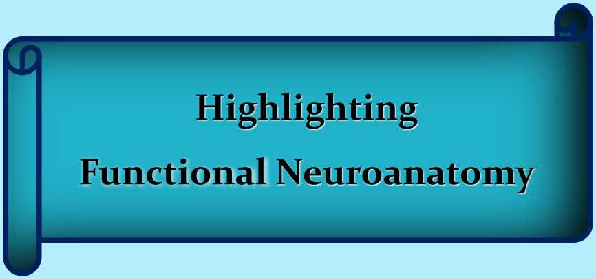 Highlighting Functional Neuroanatomy