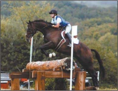 Eventing Association, was created in 1959 to guide the grow- ing sport. The USEA now has
