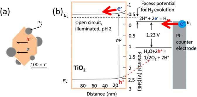 photo conversion capability than TiO 2 nanotubes alone. Fig. 19 electrolysis using illuminated oxide semiconductor