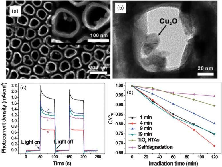 (Fig. 21(e)). In Cu 2 O (pH = 11.0)/ZnO NR arrays, the Fig. 20 (a) SEM