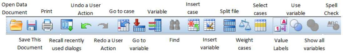 (SPSS) Reference An icon next to each variable provides information about data type and level of