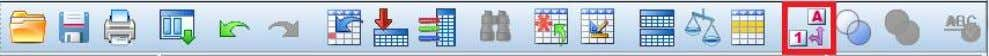 or Click on the Value Label icon located in the toolbar. 3) Missing value declaration Missing