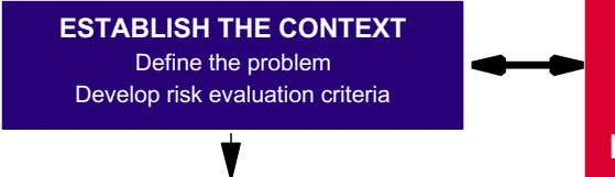 ESTABLISH THE CONTEXT Define the problem Develop risk evaluation criteria