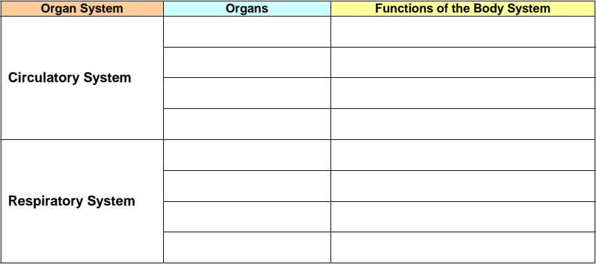 Organ System Organs Functions of the Body System Circulatory System Respiratory System