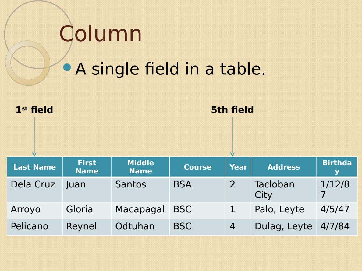 Column  A single field in a table. 1 st field 5th field First Middle Birthda