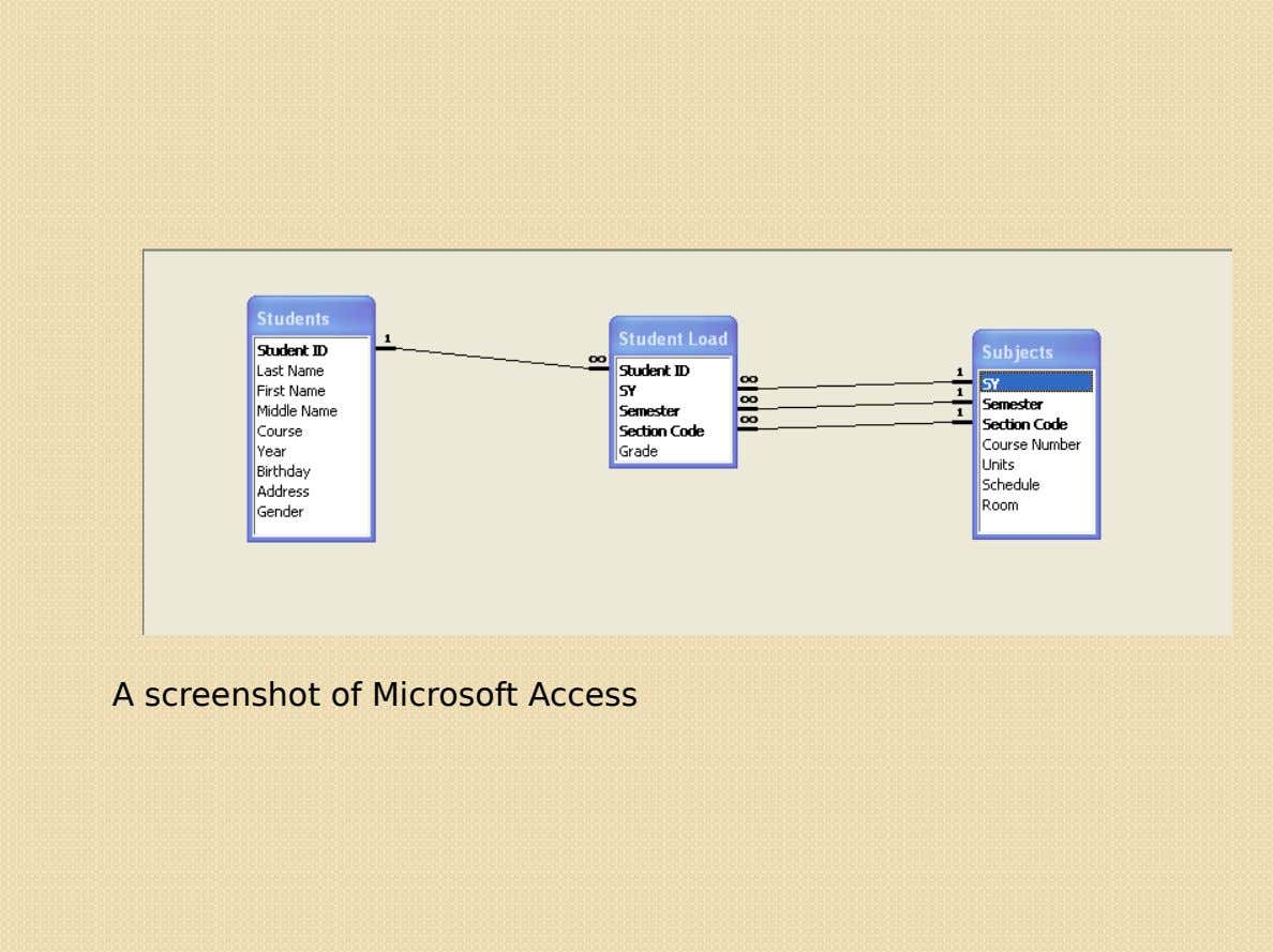 A screenshot of Microsoft Access